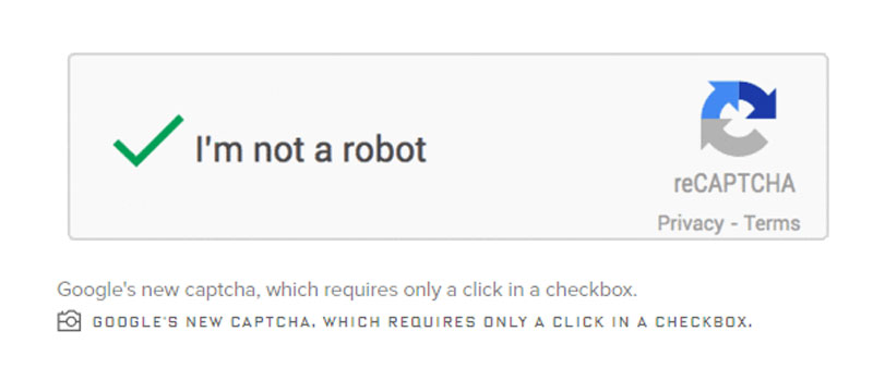 an image showing the Google Captcha box